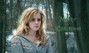 Hermione Merry christmas 2010 by Ditalion