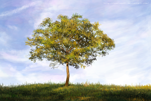 Speed paint study - tree by nominee84