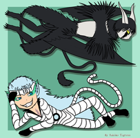 Ulquiorra and Grimmjow by Yutel-Chan