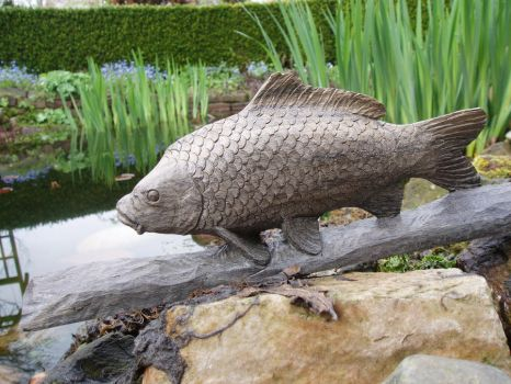 carp by woodcarve