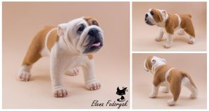English bulldog by KittenBlackUA