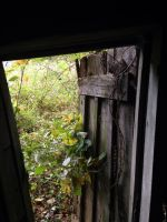 Looking out the door of the old shed by ShadowBox33