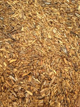 Wood Chips Texture: closer by staffdancer