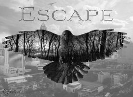 Escape by katmary