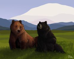 I love bears by Ellakins