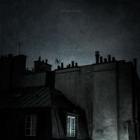midnight in paris by BlauBeerKuchen