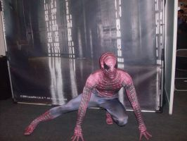 Spiderman Cosplay by hinn888