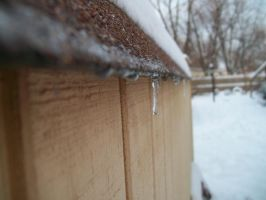 Shed Roof Icicle I by DominosAreFalling