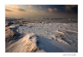 The Cold Baltic 2 by Erni009