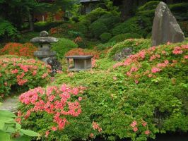 Japanese Garden by INUYASHAANGEL39