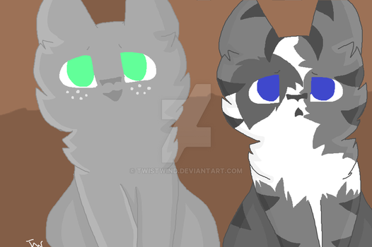 Ivypool and Dovewing by TwistWind
