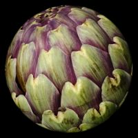 The world is an artichoke by La-Tete-Ailleurs