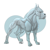 elso the female OV by reinafawn