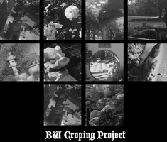 Black and White Cropping Project by TwistedDisaster