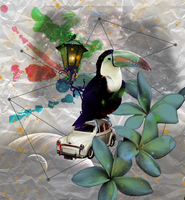 Tucan with a car by CandyNapkin