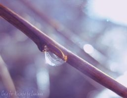 Spring drop by luni-ana