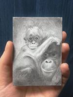 Sweet monkey ACEO card drawing by keopsa