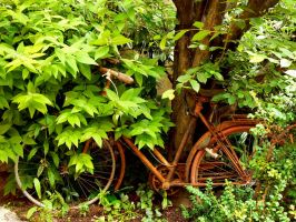 bicycle by Azagh
