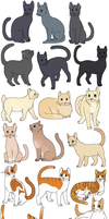 60 More Cats by Miiroku