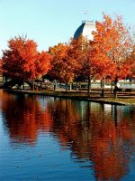 Automne Montreal by HammerSection