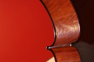 Side of Cello by rOsIeXoDeReK