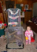 Home made ratty cage v.2 by Gizmo-The-Freaky