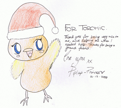 FOR TORCHIC by Piplup-Princess