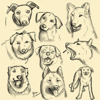 Doggy Doodles by LeechLights