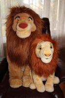 Jumbo Simba and 2011 adult Simba by Laurel-Lion