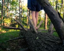Balancing on the fallen by MildlyReactive