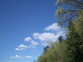 Clouds_0010 by DRE-stock