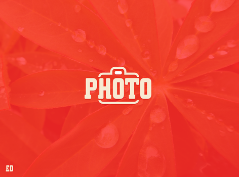 PHOTO Logo by EDesignGallery