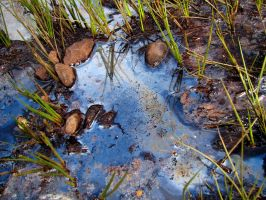 oily water by smevstock