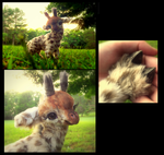 HAND MADE Poseable Baby Giraffe! by Wood-Splitter-Lee