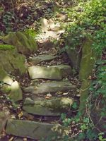 old stone stairs 1 by SpellpearlArts