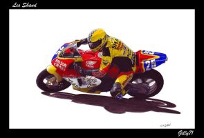 Les Shand Painting by Gilly71
