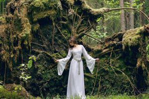 Elven Forest 2 by silverwing-sparrow