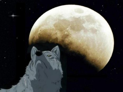 wolf moon by Chernobylpets