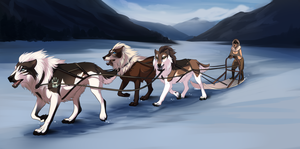 On the Trail - Collab by carnivaleart