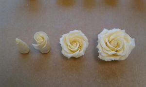 Chocolate Roses Step by Step Photo by aakahasha