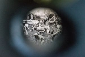 Through the Pinhole by Kaz-D