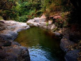 Natural Pool by code10100