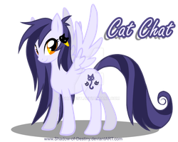My little Pony OC - Cat Chat by Shadow-of-Destiny