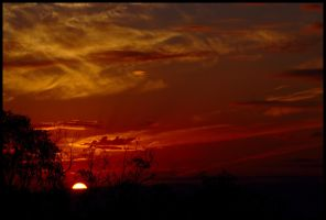 Albury - the sun rises 3 by wildplaces