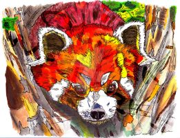 Red Panda by Digital-Goth