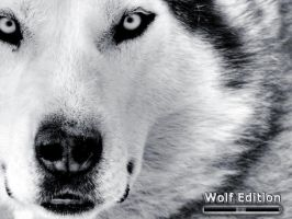 Wolf Edition by klen70