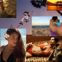 Collage II - Nyjah's Tigers by QuincMSK