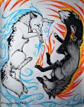 .:Fire and Ice CE:. by FrayWolf117