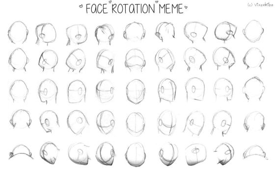 Face Rotation Meme by Vixenkiba