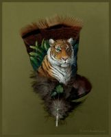 Tiger - Painted Feather by windfalcon